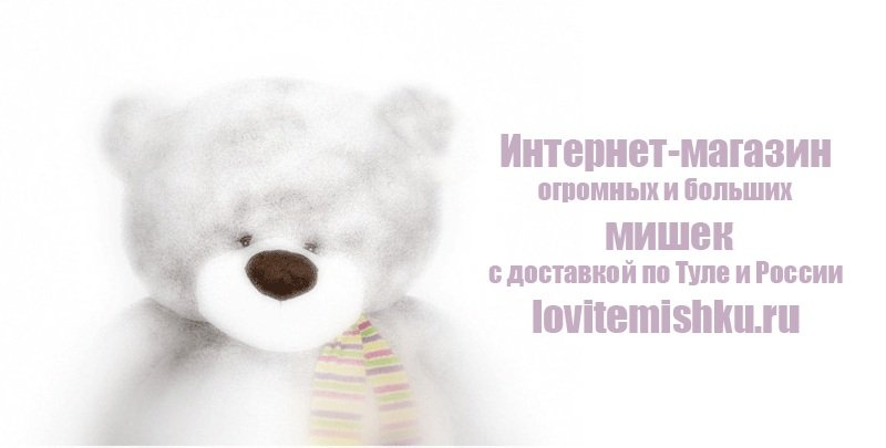 http://lovitemishku.ru/images/upload/kuplju%20%20pljushevye%20medvedi.jpg