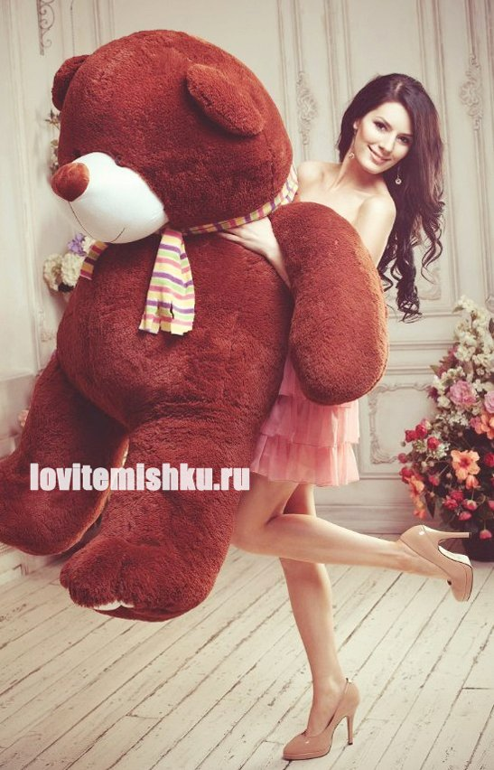 http://lovitemishku.ru/images/upload/pljushevyj%20mishka%20плюшевые%20мишки.jpg