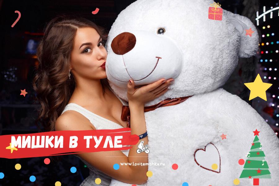 http://lovitemishku.ru/images/upload/plyushevyj-medvedi%20v%20tule%203.png